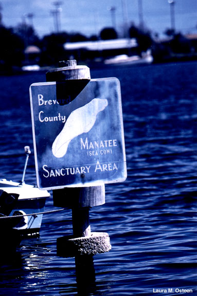 Brevard County Manatee Sanctuary sign.