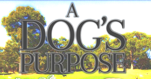 A Dog's Purpose flyer.